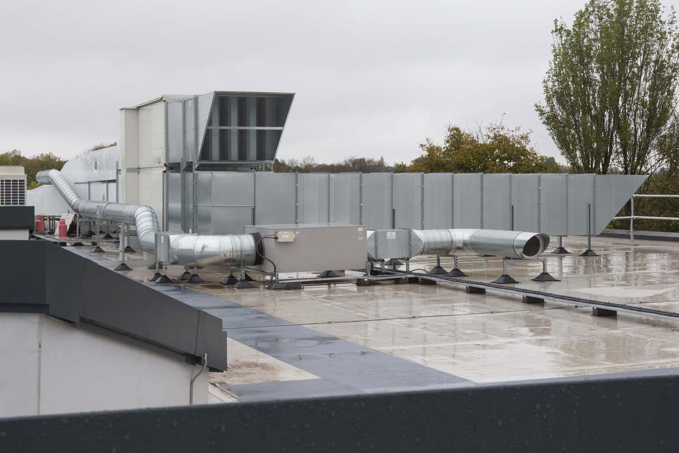 roof of harbourne academy